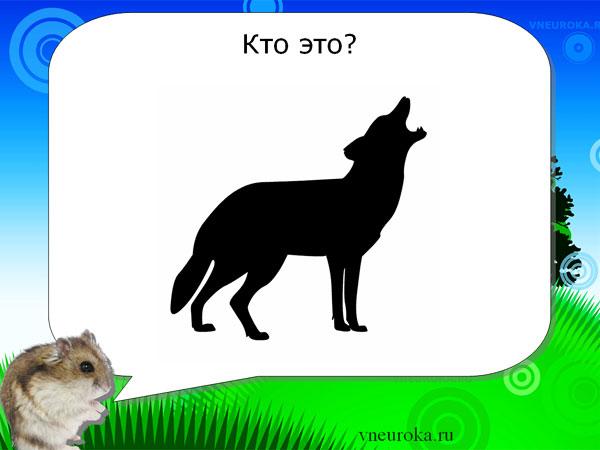 Презентацию детям на тему одичавшие животные